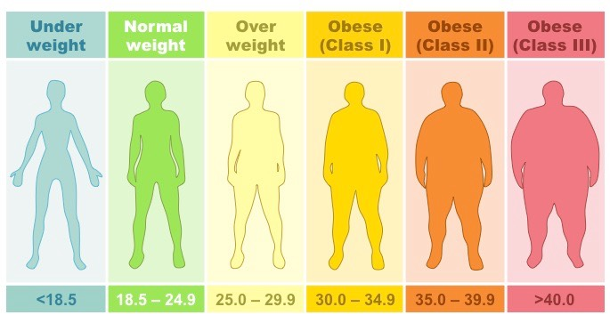 health body fat percentage male